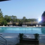 Pool and Marsh